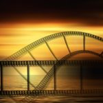 Types of Video You Can Create for Your Business